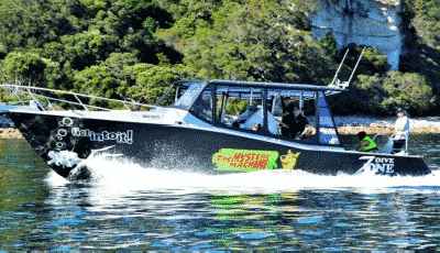 Mystery Machine Volvo Penta Repower